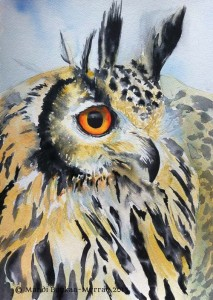 Original Watercolour painting of an Indian Eagle Owl by Mandi Baykaa-Murray