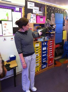 Class Teacher Holding Ulu, the South African White Faced Owl