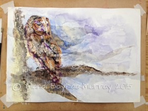 Paint colour on the owl