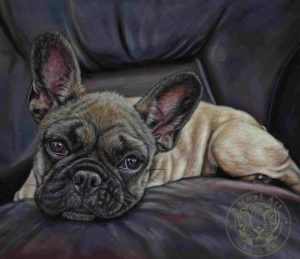 'Stella' by Lisa-Ann Watkins, Animal Art by LAW